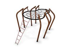 Experience the exciting world of a spider by climbing up the