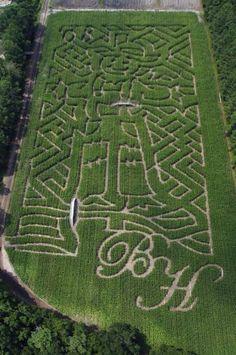 corn maze at Boone Hall plantation
