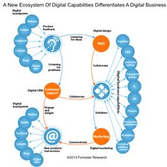 Forrester Principal Analyst Nigel Fenwick's latest blog post. Chief Digital Officer: Fad or Future?