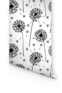 Dry Dandelion Flowers  Abstract Vector 843880 (380×400)   Wallpaper    Pinterest   Dandelions