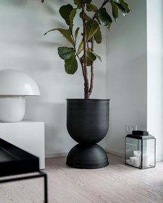 A beautiful living room corner by @abz.homestories 😍 Featuring the Ferm Living Hourglass Plant Pot, available online 💫 . #greenliving… Green Plants, Potted Plants, Indoor Plants, Beautiful Living Rooms, Hourglass, Room Corner, House Plants, Planter Pots, Vase