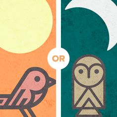 Are you an early bird or a night owl? The older I get the earlier I am ;-)    Earthcentricity - Aurora, CO