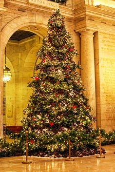 New York Public Library Weihnachtsbaum - Geschenkartikel, Christmas Tree Set, New York Christmas, Beautiful Christmas Trees, Christmas Scenes, Xmas Tree, Winter Christmas, All Things Christmas, Christmas Tree Decorations, Christmas Lights
