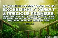 exceedingly great and precious promises