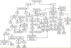MBTI Flow Chart bahahahahahahaha i got INFJ :P