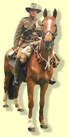 Shaun Maloney the NZMRA Parades Officer presents an immaculate display of trooper and horse at the 2006 Armistice Day Parade in Cambridge. The Association is striving to represent the NZMR Brigade that served with distinction during the Middle East conflicts of World War One in two important directions.