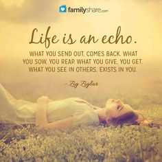 Life is an echo. What you send out, comes back. What you sow, you reap. What you give, you get. What you see in others, exists in you. - Zig Ziglar