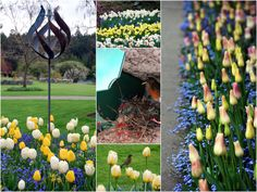Spring in bloom at The Butchart Gardens | homeiswheretheboatis.net