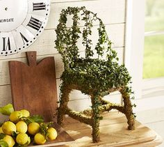 Live Ivy Chair Topiary #potterybarn