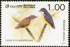 Legge's Flowerpecker stamps - mainly images - gallery format
