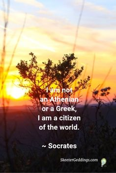 I am not an Athenian or a Greek, I am a citizen of the world. Socrates Quotes, Amazing Quotes, Food For Thought, Citizen, Favorite Quotes, Greek, Education, World, Determination