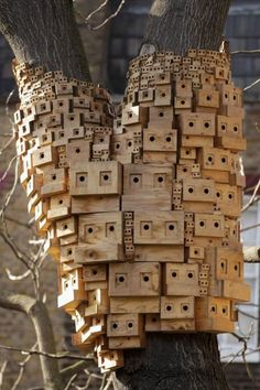 Bee boxes  I am in love with these  PLANT ONLY ORGANIC FLOWERS, TREES AND SHRUBS TO SAVE BEES:  WWW.BEEHABITAT.COM