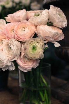 Paris Photography - Soft Pink Romantic Ranunculus for sale in Paris, France -  8x10 fine art photograph - flower decor