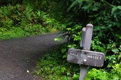 My ultimate guide to Olympic National Park! I outlined my trip with all my favorite stops along the way, going counter-clockwise around the park. Cascade National Park, National Parks, Washington State, Olympics, Trail, Inspired, Outdoor Decor