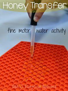 Still Playing School: Honey Transfer: A Fine Motor Water Activity