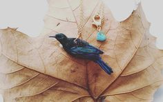 Tui bird necklace. New Zealand native bird by KatieElizabethONeil