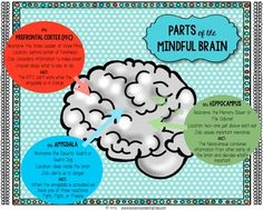 FREE poster of the three parts of the Mindful Brain.  In just a few minutes a day, it can actually create and strengthen healthy new pathways in the brain, improving our ability to regulate emotions, focus, and learn more efficiently!