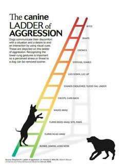 Ladder of fear Aggression