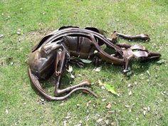 Scrap metal Dogs #sculpture by #artist Helen Denerley titled: 'Ajay (Scrap Metal Recycled life sized Greyhound statue/scuipture)'. #art #sculptor #artwork #HelenDenerley