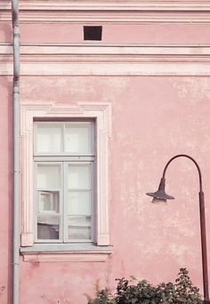 A delicious shade of blushing pink for the exterior of this old building. For a similar shade of pink paint try Koha for the Guthrie Bowron paint range. Available from Guthrie Bowron stores. Pretty In Pink, Pink Love, Pale Pink, Perfect Pink, Dusty Pink, Pink Black, Pastel Colors, Pink Color, Murs Roses