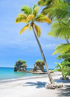 Vieques Island, Costa Rica