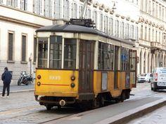 Eles são um meio de transporte eficaz, que contribui com o trânsito e não agride o meio ambiente.
