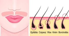 Unwanted facial hair is a common problem among women and everyone is looking for ways to get rid of facial hair naturally. Its growth might be due to hormonal imbalances, certain medications, or a condition called hirsutism. Beauty Care, Beauty Hacks, Beauty Tips, Hair Beauty, Female Facial Hair, Facial Hair Women, Best Hair Removal Products, Hair Mask For Growth, Unwanted Hair