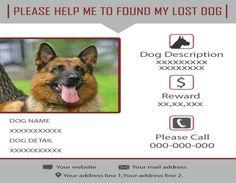 Found My Lost Cat  Found Dog Flyer    Flyer Design