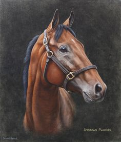 DeviantArt is the world's largest online social community for artists and art enthusiasts, allowing people to connect through the creation and sharing of art. Horse Head Drawing, Horse Drawings, Horse Portrait, Dog Portraits, Crown Painting, American Pharoah, Horse Posters, Horse Artwork, Horse Quotes