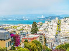 The 10 Most Popular Sightseeing Attractions in San Francisco, including Lombard Street, the Painted Ladies, Coit Tower, and Alcatraz.