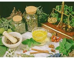 Os chás são a forma mais conhecida de uso de ervas e hortaliças, mas algumas também podem ser usadas como emplastros ou banhos, conheça algumas delas e como usá-las