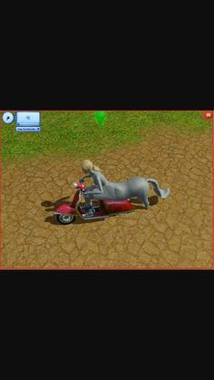 Sims glitch