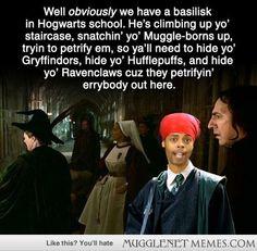 13 Hilarious Yet Questionable Harry Potter Memes - Harry Potter Memes and Funny Pics - MuggleNet Memes
