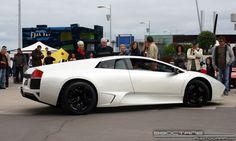 Lamborghini Murcielago - white