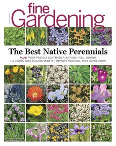 We're talking fall combinations and containers, cover crops, the best native plants, and so much more.