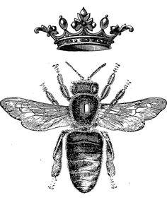 'Royal King or Queen Bee Design Hand Drawn Vintage Look Artwork' Framed Print by atlastroy Queen Bee Tattoo, Bumble Bee Tattoo, Bee Drawing, King Bee, Bee Illustration, I Love Bees, Royal King, Vintage Bee, Flower Sleeve