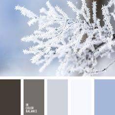 palette of cold tones palettes with color ideas for decoration your house, wedding, hair or even nails. Warm Color Schemes, Color Schemes Colour Palettes, Red Colour Palette, House Color Schemes, Pastel Palette, House Colors, Color Balance, Winter Colors, Color Swatches