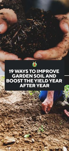 19 Ways to Improve Garden Soil and Boost the Yield Year After Year