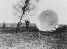 1918 An observer is disentangled from a tree after parachuting from his balloon