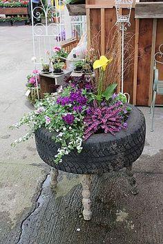 Reusa en jardin
