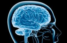 9 Signs That Neuroscience Has Entered The Classroom  Some interesting stuff here and some I'm not so sure I agree with POV. Love learning to learn theory though.