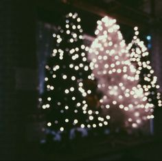twinkling lights