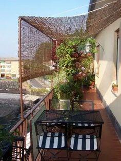 Pergola For Small Patio Narrow Balcony, Small Balcony Design, Small Balcony Garden, Small Balcony Decor, Small Patio, Patio Design, Apartment Balcony Garden, Apartment Balcony Decorating, Apartment Balconies