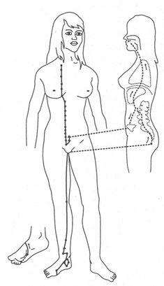 Fifth Element, Alternative Medicine, Diy And Crafts, Healing, Pets, Magic, Acupuncture, Health, Alternative Health