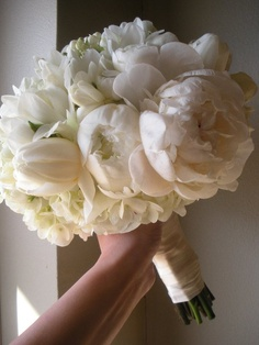 peonies- dream wedding flower (add in some pearls and we're perfect)