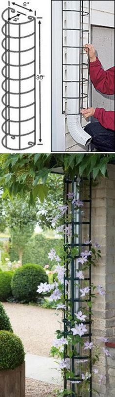 Climbing plants will hide downspouts and gutters with downspout trellis gutter cover backyard landscaping landscaping garden landscaping Diy Garden, Diy Garden Trellis, Outdoor Gardens, Front Yard Landscaping, Garden Design, Patio Garden, Landscape Edging Stone, Outdoor, Backyard