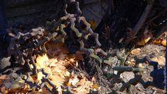 Patyna czasu... Cmentarz Stary. (06)