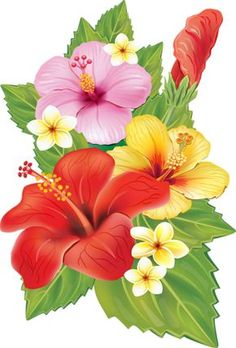 EPS Vectors of Arrangement from hibiscus flowers - Search Clip Art, Illustration, Drawings and Clipart Vector Graphics Images Tropical Flowers, Hawaiian Flowers, Tropical Art, Hibiscus Flowers, Hibiscus Flower Drawing, Exotic Flowers, Purple Flowers, Watercolor Flowers, Watercolor Art