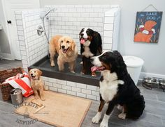 Dog shower in the mud room - such a life saver! We used a black shower pan against white subway tile and dark grout.