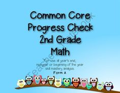 2nd Grade Common Core Progress Check: Math from Primarily Teaching on TeachersNotebook.com (31 pages)  - This resource is designed to let you know exactly which students have and have not mastered 2nd grade common core standards in math. It can be used at years end, as a mid-year progress check or beginning-of-the-year skills mastery analysis to inform